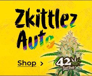 Fast-Buds-Banner »Zkittlez Auto«