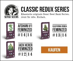Sensi-Seeds-Banner »Classic Redux«