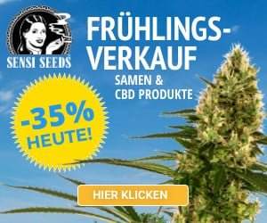 Banner von Sensi Seeds »Frühlungsverkauf 2020«